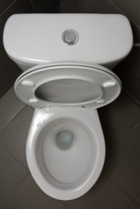top view of a toilet with an open lid